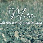 Những status về mưa bằng hình ảnh hay và ý nghĩa nhất